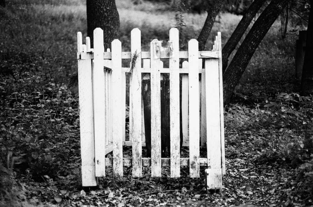 A black and infrared image shows a small, probably 3 feet by 4 feet white picket fence in the middle of a forest like area.  Inside the fence is a barely visible, wooden headstone.  The wood is aged and leaning forward.  There are leaves scattered all over the ground, and a few tree trunks jut out in the background.